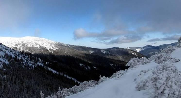Морозні Карпати: Якою казковою буває зима на вершинах Ґорґан (ФОТО)