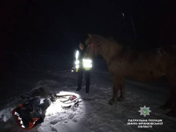 На Прикарпатті кобила допомогла патрульним врятувати господаря (ФОТО, ВІДЕО)