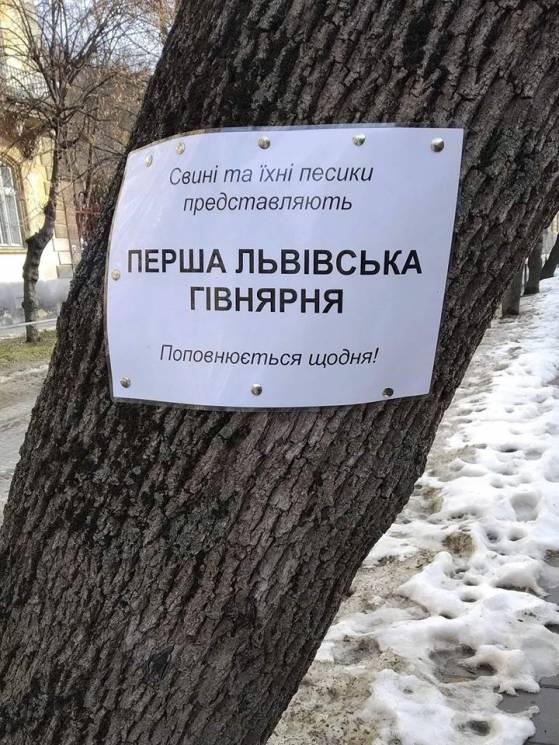 Як у Львові власників собак мотивували прибирати за ними лайно (ФОТО)