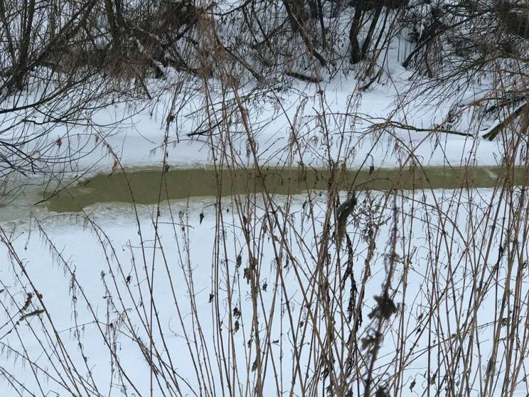 Екологи Тернопільщини виявили скид відходів спиртзаводу у річку