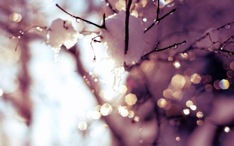 День Трьох Святих: Можна не працювати, багато мріяти, а от ревнувати і злитися - не варто