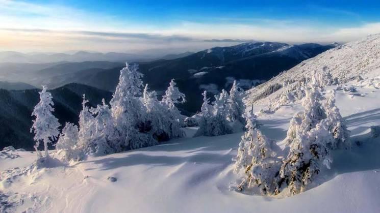 Якими сонячно-сніжними бувають вершини у карпатському заказнику (ФОТО)