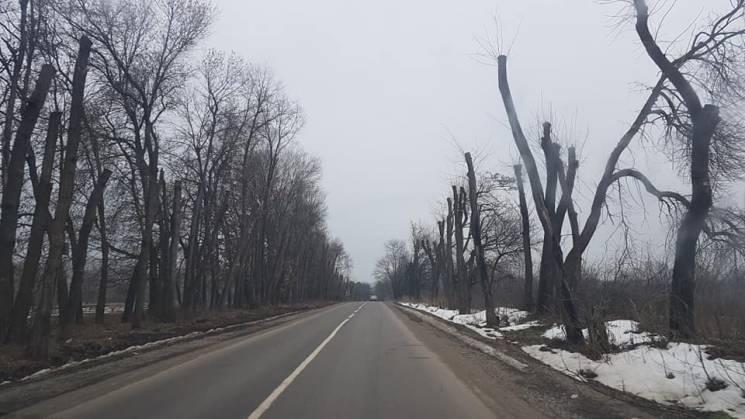 На місцевих дорогах Хмельниччини проводять аварійну обрізку посадок (ФОТО)