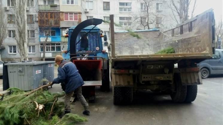 У Запоріжжі почали прибирати ялинкові звалища (ФОТО)