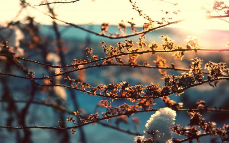 У Сумах на День закоханих буде хмарно і трохи сонячно