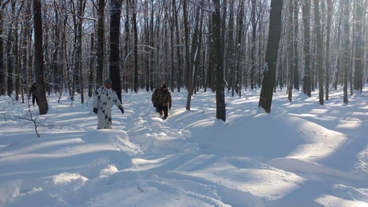 Перепис тварин: На Кропивниччині порахували кабанів, козуль та оленів