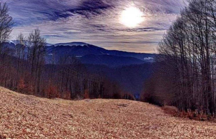 Неймовірна краса: світлини зимових Карпат