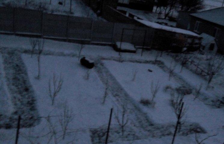 """В """"темную"""" новогоднюю ночь в Крыму татарин вытоптал на снегу огромную тамгу"""