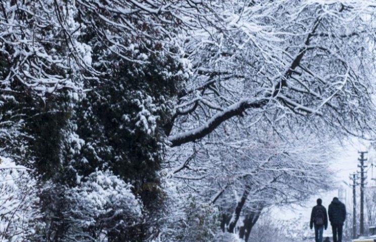 Закарпаття: прогноз погоди на 10 січня - вказує на липень