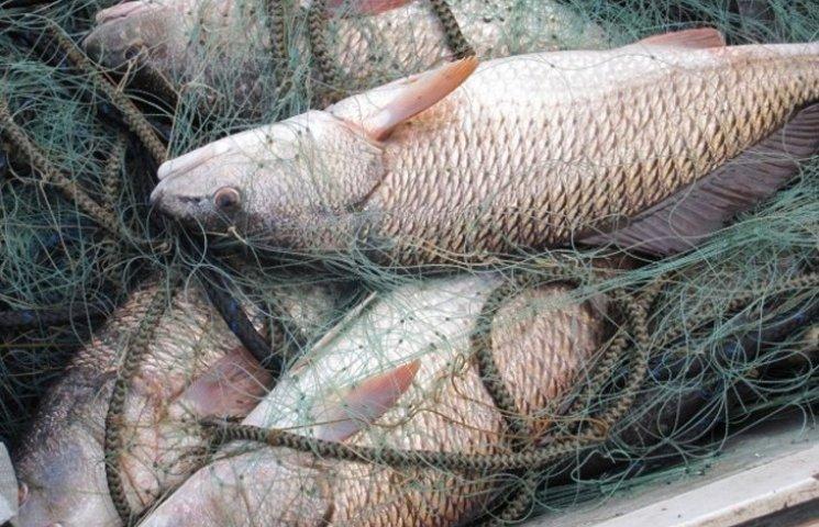 Сумська рибоохорона нарахувала браконьєрам 230 тисяч гривень штрафів