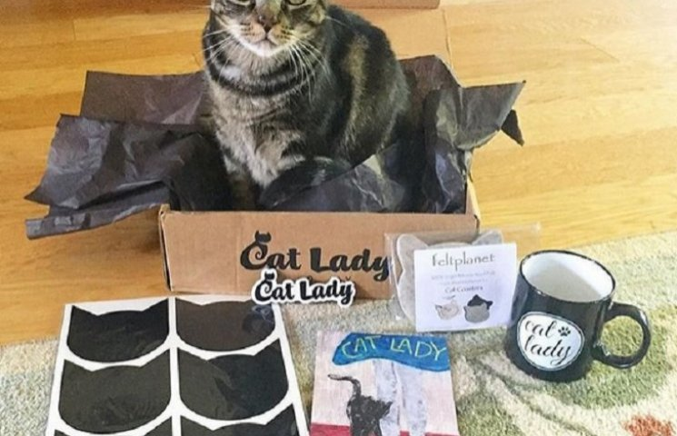 ТОП-13 гениальных кото-вещей для тех, кто любит котов