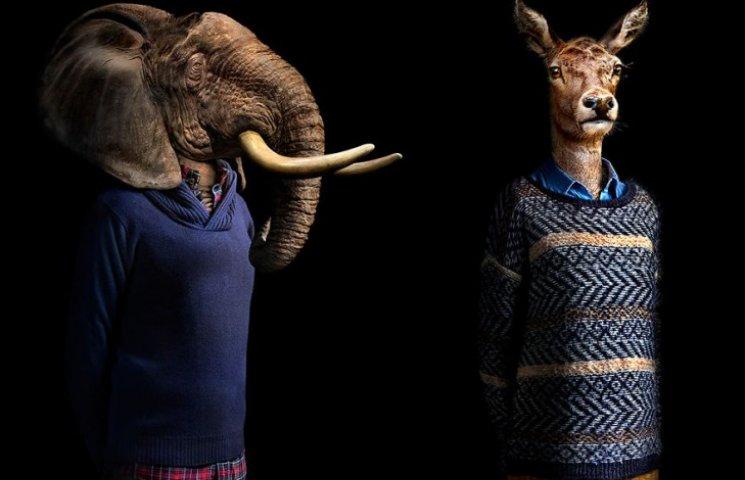 Як виглядали б тварини, якщо носили б одяг