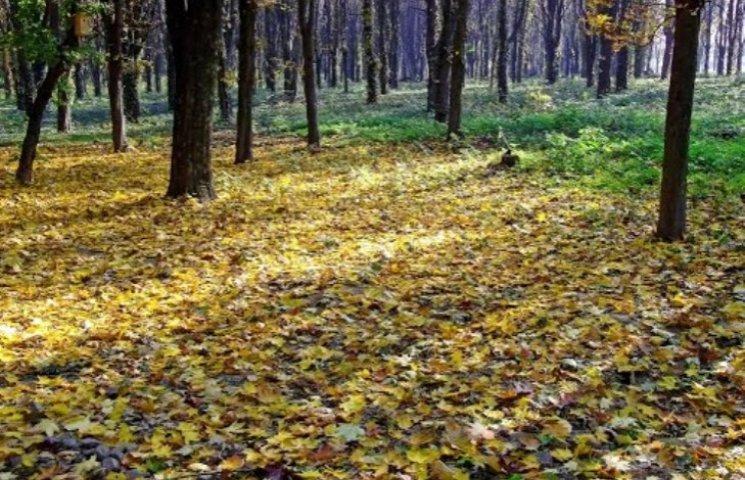В Ужгороді можуть закрити Боздоський парк через збитковість