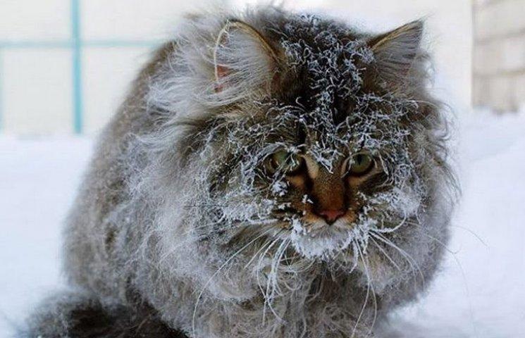 """Вінницькі """"ДСНСівці"""" попереджають про різке похолодання на Різдво"""
