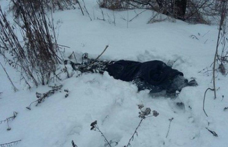 В Кривом Роге мужчина обнаружил своего брата замерзшим в снегу