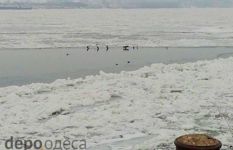 Одещині загрожує повінь через льодохід на Дунаї (ФОТО)