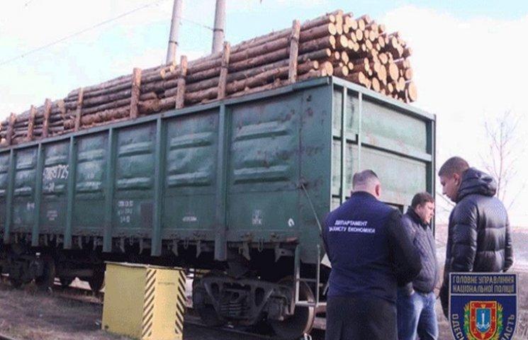Поліція Одещини перекрила канал незаконного вивезення лісу (ФОТО; ВІДЕО)