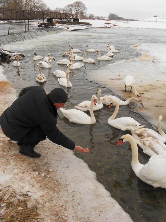 У Національному природньому парку рятуют…