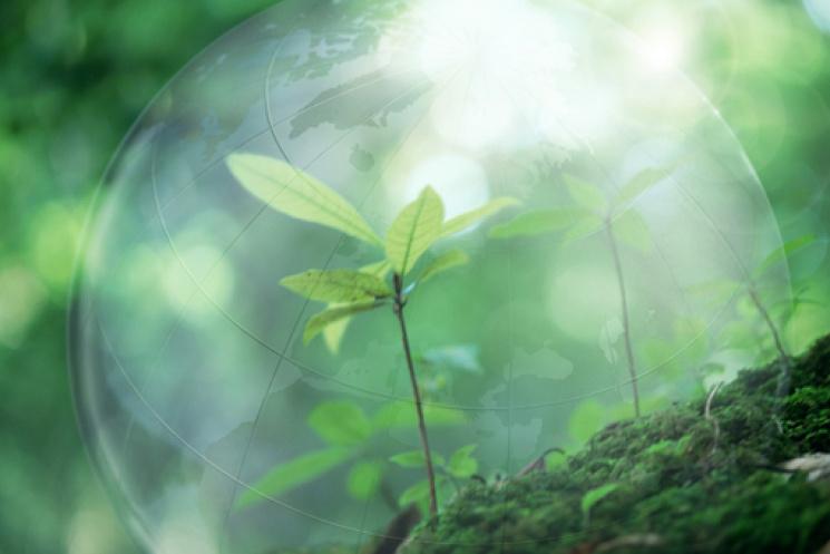 Эксперты определили экологический рейтин…