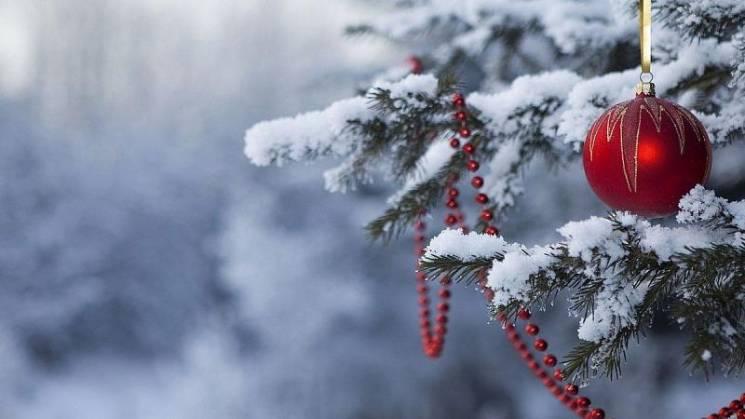 Рождество на Кубани пройдет без снега и…