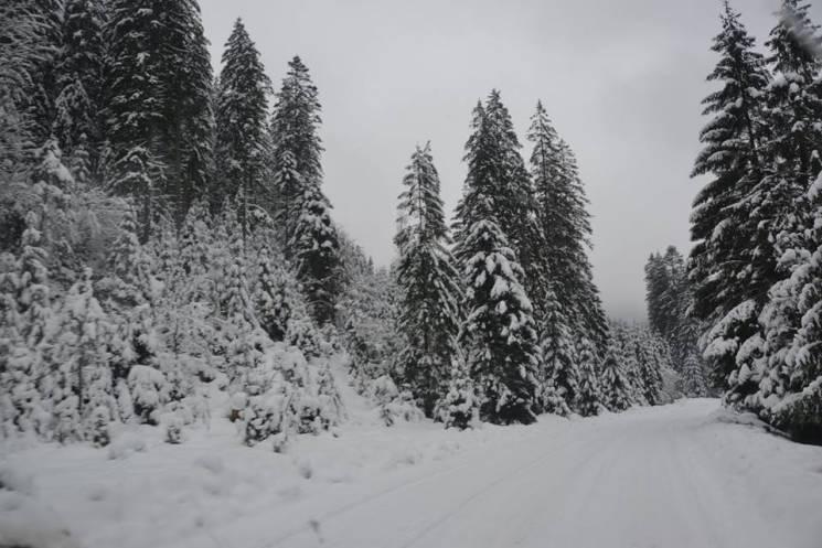 Де на Закарпатті у січні шукати справжні зимові краєвиди (ФОТО)
