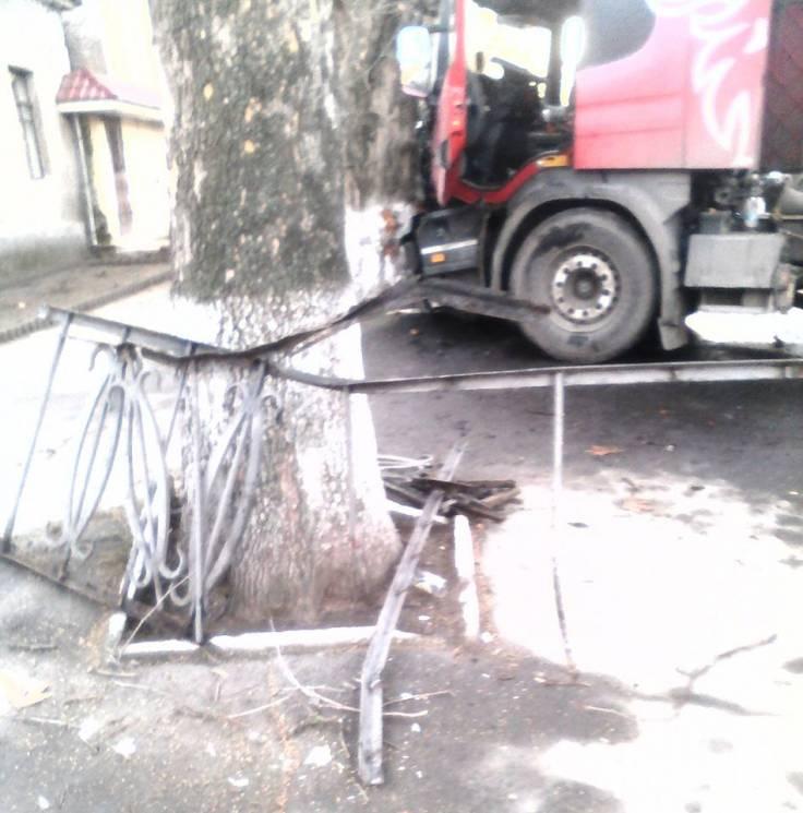 На Миколаївщині вантажівка протаранила паркан та врізалась у дерево (ФОТО)