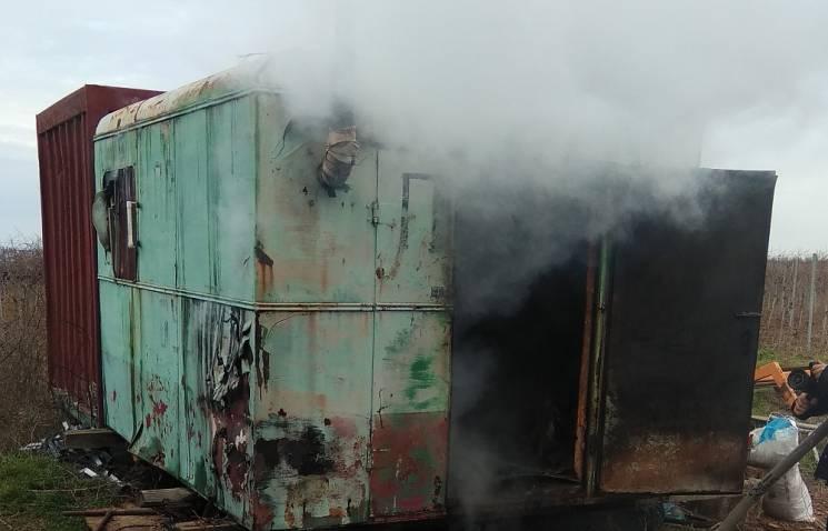 На Миколаївщині на винограднику сталася пожежа (ФОТО)