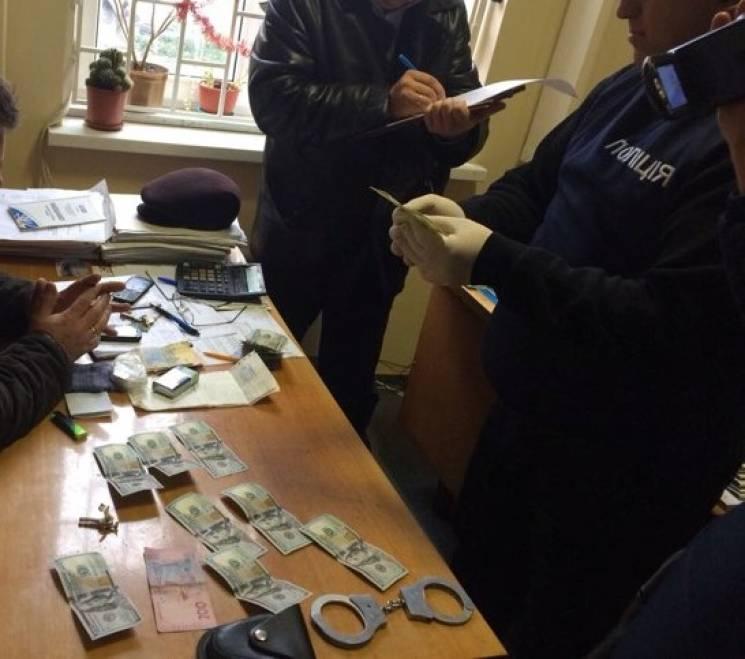 На Закарпатті посадовця зловили при отриманні 1500 доларів хабара (ФОТО)