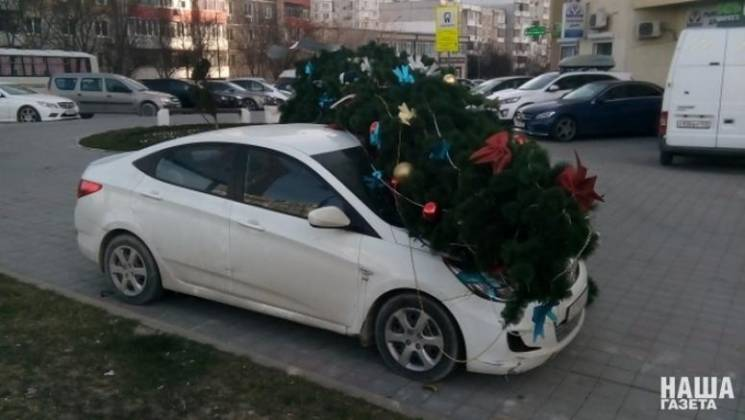 В Новороссийске новогодняя елка упала на…