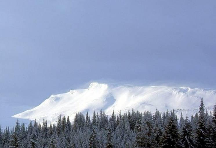 Які краєвиди відкриваються зі Свидовецького хребта у Карпатах взимку