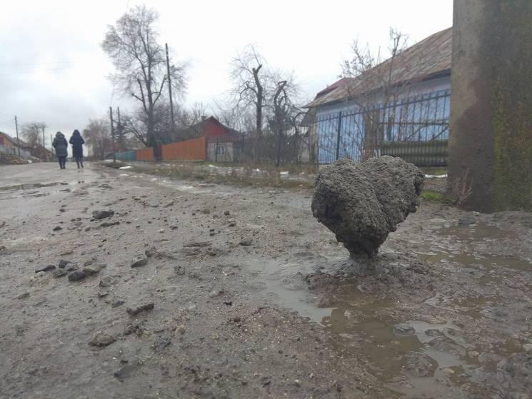 В ожидании дня влюбленных: На Тернопольщ…