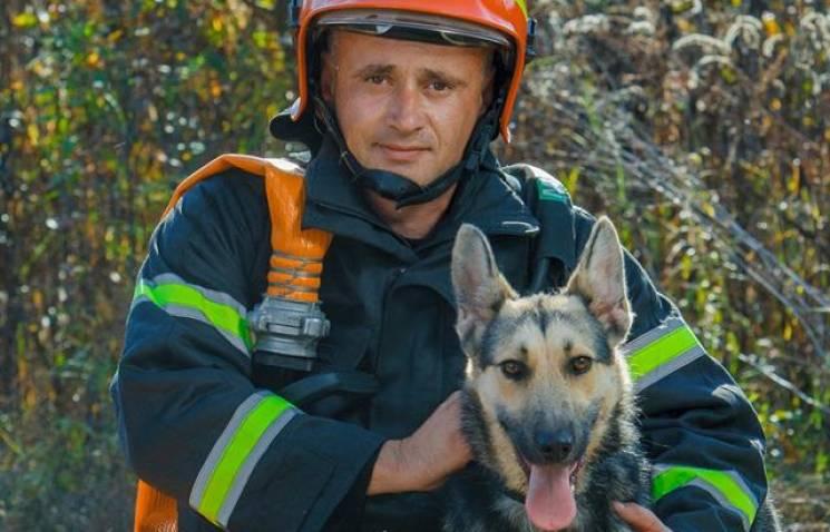 """""""Надзвичайні тварини"""" від закарпатських рятувальників перейняли ще три області (ФОТО)"""