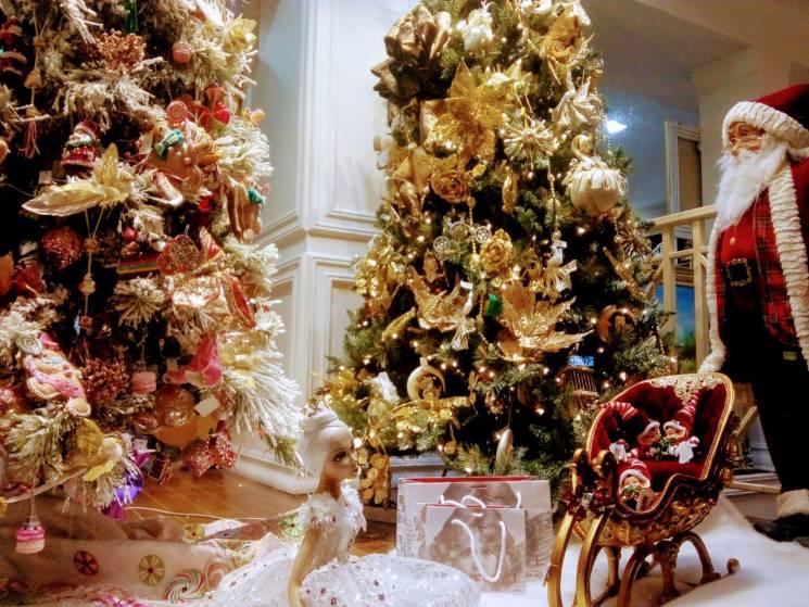 Різдво в Одесі: Де покататися на ковзанах та безкоштовно поласувати кутею