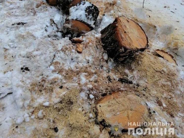 """На Полтавщині затримали банду """"вбивців""""…"""