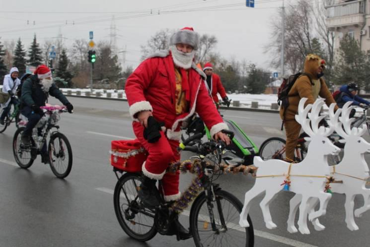 Чим жила Україна: Санта Клауси на роверах, ялинка з бісеру та бориспільський Тарзан