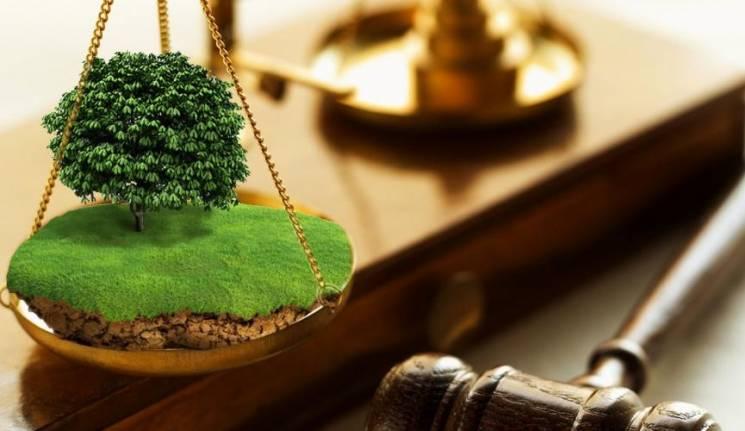 На Коломийщині громаді повернули землю вартістю майже 4 мільйони гривень