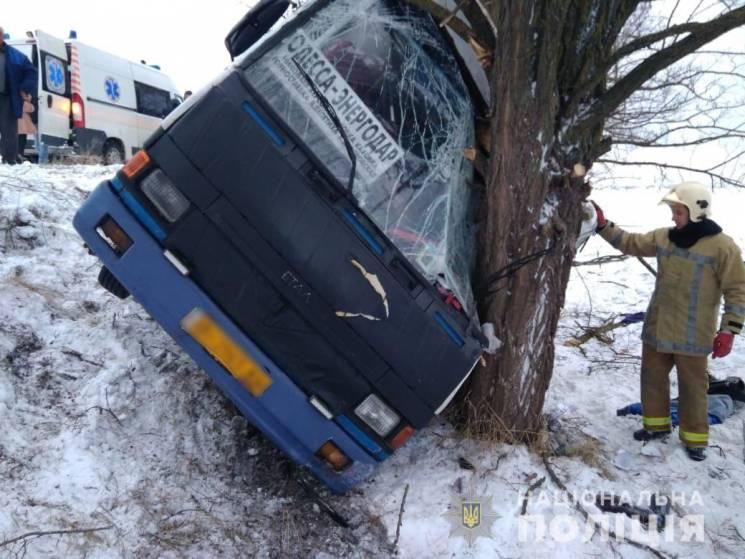 На херсонській трасі перекинувся автобус з пасажирами, є постраждалі (ФОТО)