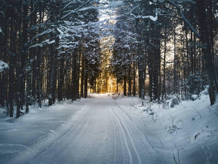 Крижана Ніагара та сніг у Гімалаях: Для кого ця зима виявилася екстремальною
