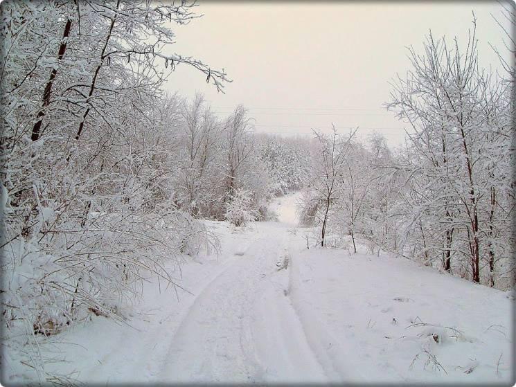 Для чого 30 січня треба стати на перехресті і піти звідти задом наперед додому