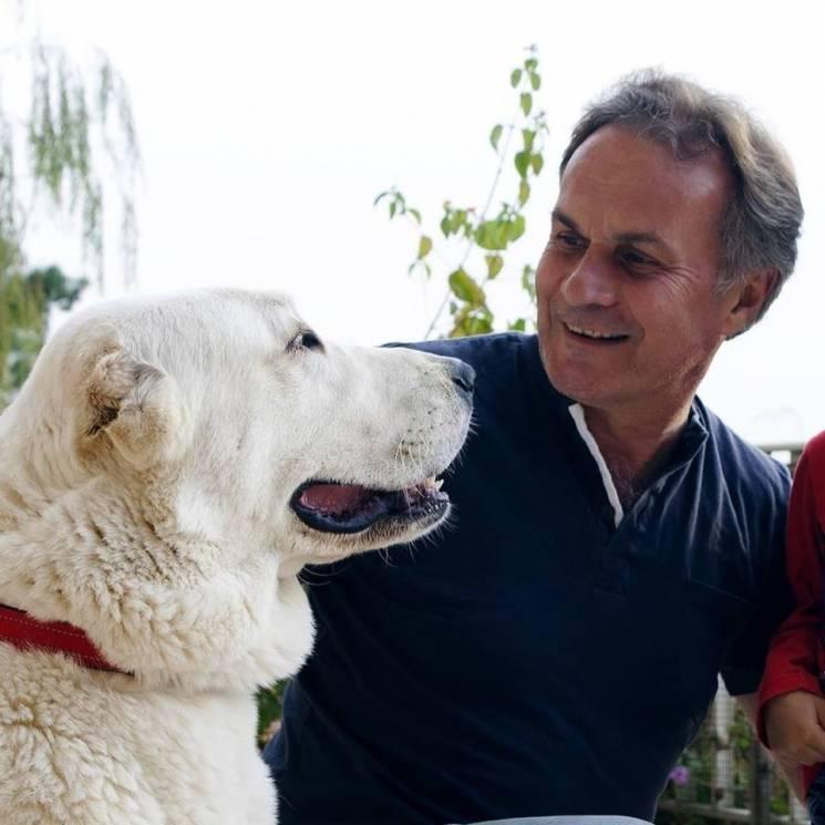 Зоопсихолог про тварин з притулку: Як об…
