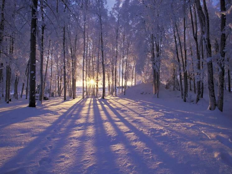 У день Юхима, другого лютого, не співайте після заходу сонця і покваптеся вже з весіллям