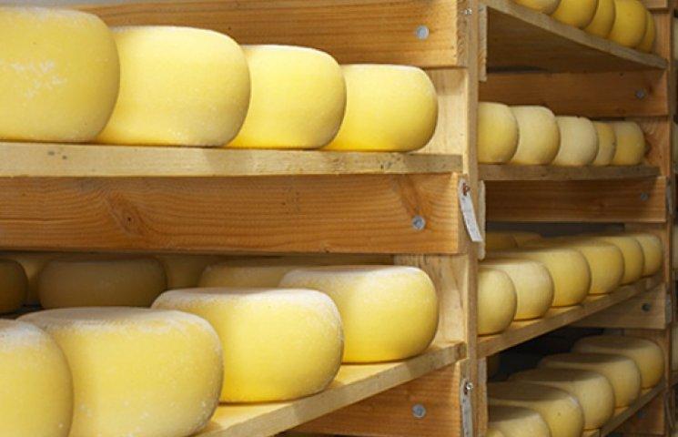 Россияне в украинском сыре нашли антибиотики, а говядине - кишечную палочку