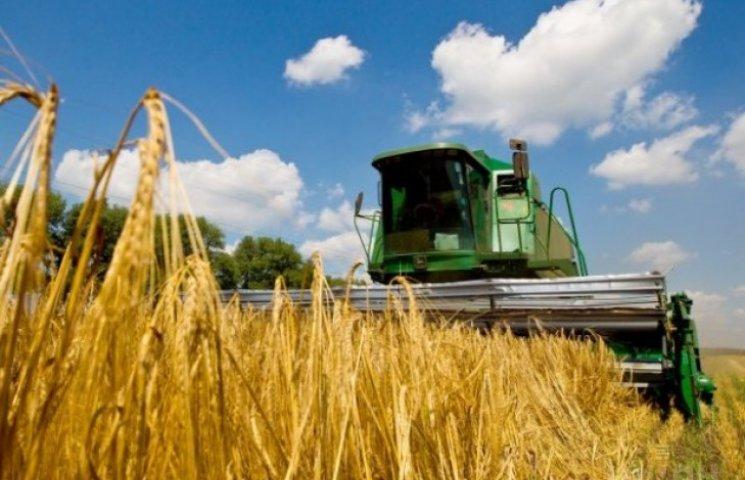 Урожай ранніх зернових цьогоріч на Вінниччині значно менший