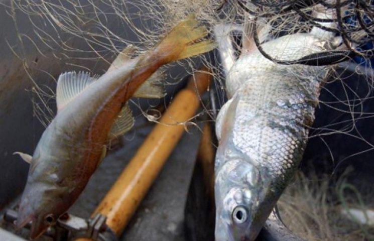 """На Хмельниччині браконьєри """"наловилися"""" рибки в збиток державі на 115 тисяч гривень"""