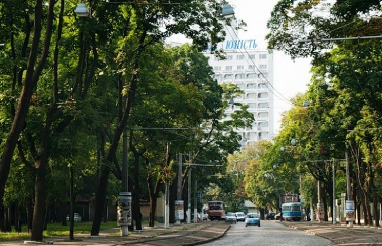 Міськзелентрест завдає Одесі шкоди більш ніж на 1 млн гривень