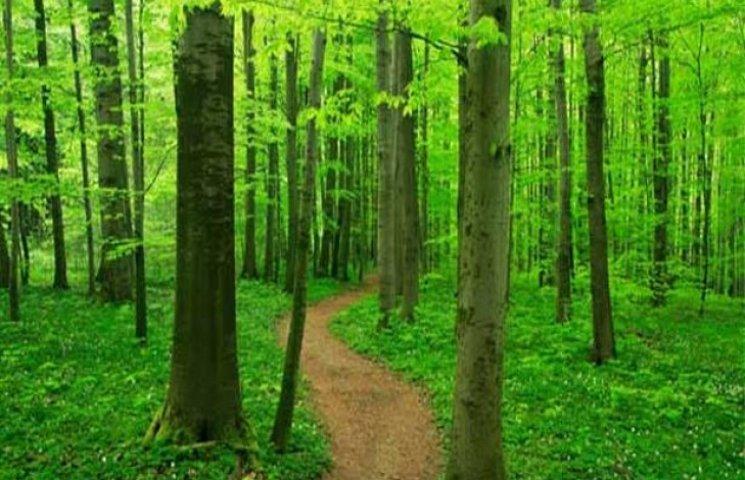 """На Ізяславщині розроблятимуть """"зелені"""" маршрути"""