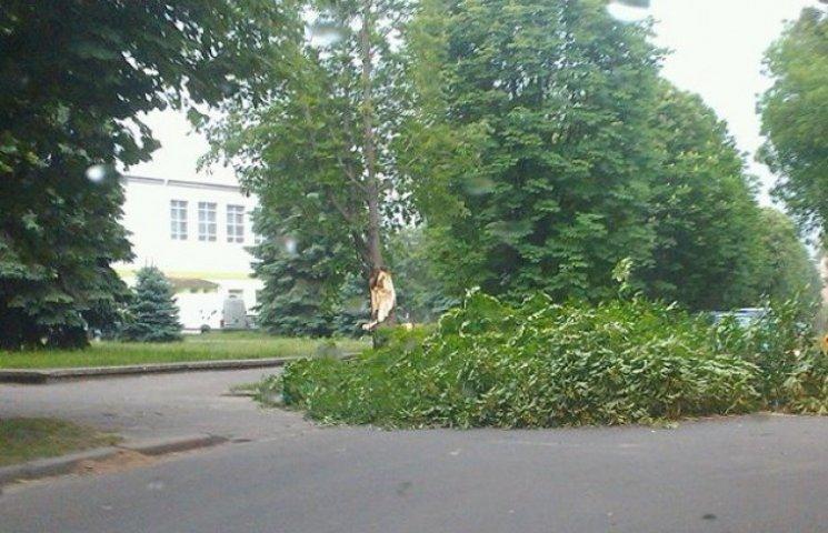 Негода знеструмила 14 населених пунктів на Полтавщині