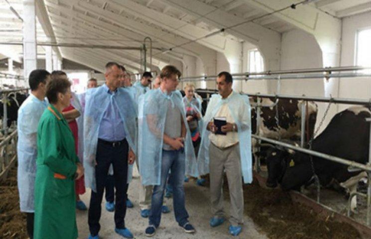 На Сумщині побудували новий молочний комплекс