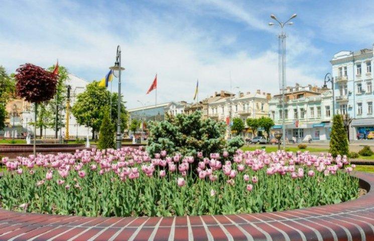 Вінниця і квіти: як звичайне українське місто заграло усіма фарбами веселки