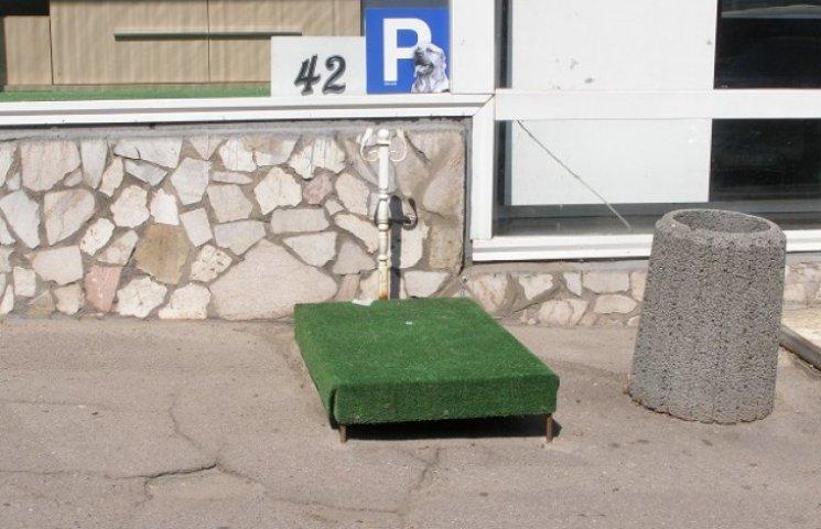 У Дніпропетровську з'явилися парковки для собак